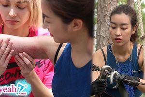 Hoa hậu Đỗ Mỹ Linh bầm tím tay chân khi lần đầu 'nghiêm túc' thực hiện thử thách trong 'Cuộc đua kỳ thú 2019'