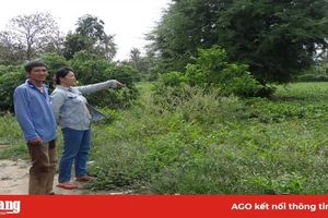 Đến UBND địa phương để được hướng dẫn việc chuyển mục đích sử dụng đất