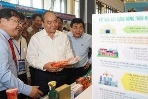 Thủ tướng: Miền Trung phải vận dụng chiến lược kinh tế biển, tập trung vào 5 trụ cột