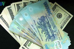 Tỷ giá ngoại tệ ngày 20/8: Nhiều ngân hàng thương mại giảm giá USD
