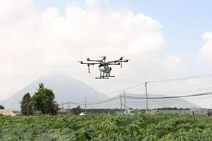 Một hợp tác xã nông nghiệp đầu tư mua máy bay không người lái phun thuốc bảo vệ thực vật
