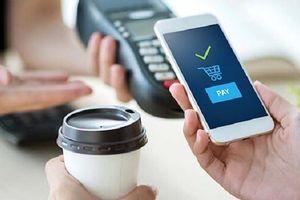 Ví điện tử tại Việt Nam nên mở cửa thế nào với nhà đầu tư ngoại?
