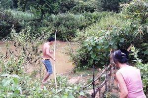 Ra vườn hái ổi, hai anh em ruột trượt chân đuối nước thương tâm