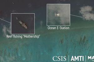Khai thác tận diệt ở Biển Đông và tham vọng phi lý của Trung Quốc