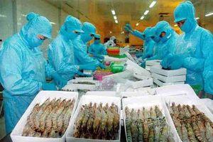 Nóng: Mỹ áp thuế 0% đối với tôm xuất khẩu Việt Nam