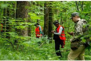 Bé gái 5 tuổi được tìm thấy sau 3 ngày mất tích trong rừng