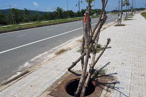 Hàng trăm nắp cống trên tuyến đường đẹp nhất đảo Phú Quốc bị trộm cắp