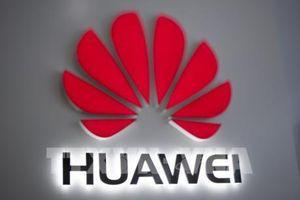 Huawei cảnh báo sẽ cắt giảm một nửa nhân viên tại Australia