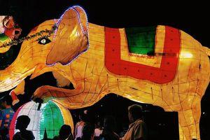 Lễ hội Thành Tuyên 2019 diễn ra vào ngày nào?