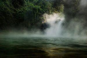 Dòng sông tử thần ở Amazon, 'luộc chín' mọi sinh vật rơi xuống