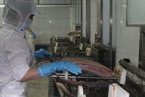 Xuất khẩu cá ngừ sang Mỹ tăng hơn 60%