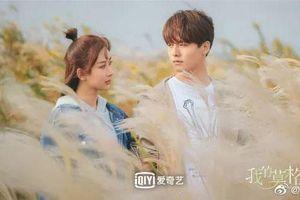 Phim mới của Dương Tử và Mã Thiên Vũ xác nhận ngày lên sóng