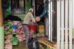 Lâm Đồng: Phạt chủ cơ sở trữ 8 tấn thịt heo bốc mùi hôi thối hơn 100 triệu đồng