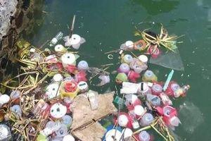 Thả hơn 3 vạn hoa đăng nhựa xuống biển Cát Bà, chính quyền nói gì?