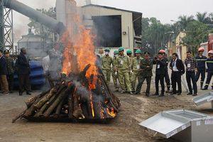 Tiêu hủy ngà voi cần trở thành thông lệ ở Việt Nam