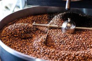 Giá cà phê hôm nay 25/8: Cuối tuần đi ngang