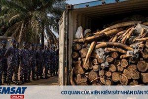 CITES CoP 18 chưa cho phép bán kho ngà dự trữ