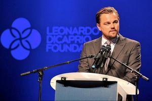 Leonardo DiCaprio viện trợ 5 triệu USD cứu rừng Amazon