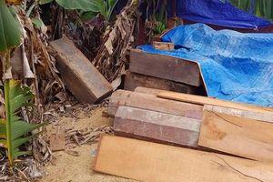 Phát hiện thêm nhiều điểm tập kết hàng trăm m3 gỗ tại Đắk Lắk