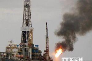 Giá dầu thô của Mỹ chạm mức thấp nhất trong hơn hai tuần
