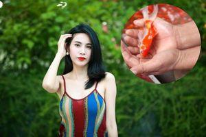 Clip Công Vinh phóng sinh cá bị fan 'bóc mẽ', Thủy Tiên nổi đóa lên đáp trả cực gắt