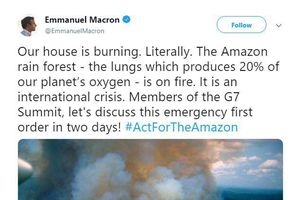 Ronaldo và loạt người nổi tiếng bị tố 'sống ảo' vì đăng nhầm ảnh về vụ cháy rừng Amazon