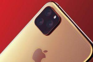 iPhone 11 có thể không cần dùng ốp lưng, không vỡ kính
