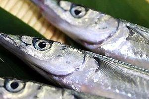 Bác sỹ cảnh báo ẩn họa khi ăn cá