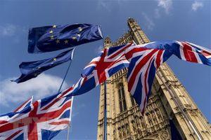 Vấn đề Brexit: EU kêu gọi Anh tuân thủ nghĩa vụ tài chính
