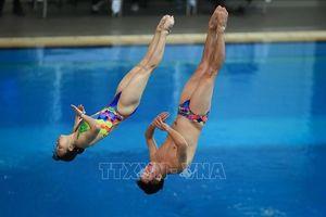 Khai mạc Giải Nhảy cầu vô địch quốc gia 2019