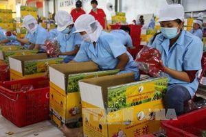 Thêm cơ hội cho hàng Việt ra nước ngoài