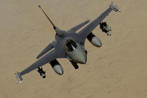 Tiêm kích F-16 'đầy đủ chức năng' được rao bán ở Florida (Mỹ)