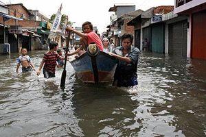 Bất cập: Indonesia dời thủ đô từ đất lụt sang rừng bị đốt cháy