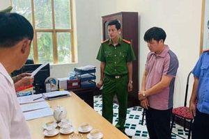 Bắt trưởng phố câu kết lập hồ sơ khống 'hô biến' lúa thành hoa ly, gây thiệt hại 1,6 tỉ đồng