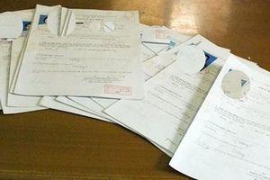 Khởi tố 2 vợ chồng làm giả giấy khám sức khỏe cho hàng trăm giáo viên
