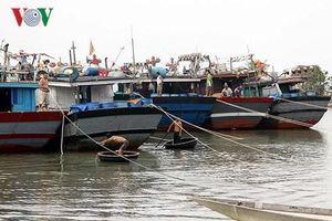 Quảng Trị hiện vẫn còn 20 tàu với 146 thuyền viên mất liên lạc trên biển