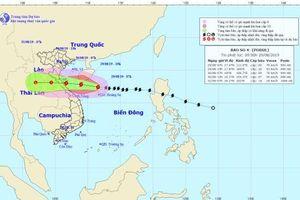 Bão Podul sẽ đổ bộ các tỉnh từ Nghệ An đến Quảng Bình