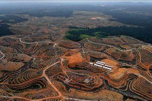 Indonesia chi 40 tỷ USD nâng cấp Jakarta sau khi công bố địa điểm đặt thủ đô mới