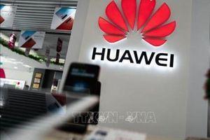 Mặc lệnh cấm của Mỹ, Huawei vẫn sẽ ra mắt smartphone cao cấp Mate 30