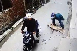 Nam thanh niên bị bắn tử vong khi đuổi theo đối tượng nghi trộm chó