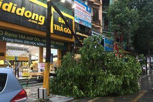 Chùm ảnh: Cây bật gốc trên đường, giao thông trên phố Hà Nội 'tê liệt' sau mưa giông do bão số 4