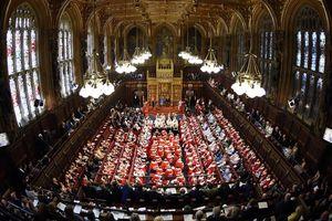 Hàng triệu người ký đơn phản đối ông Boris Johnson 'treo' Nghị viện Anh
