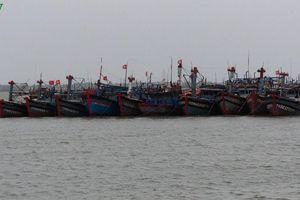 Đối phó bão số 4, nhiều địa phương cấm tàu thuyền ra biển