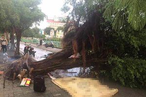 Mưa gió quật đổ nhiều cây xanh ở Hà Nội, đè chết 1 người