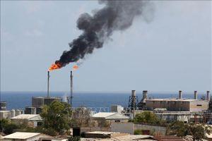 Dự trữ dầu thô của Mỹ giảm mạnh đẩy giá dầu thế giới đi lên