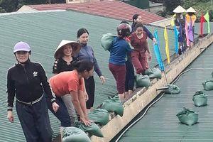 Cô giáo mầm non đội mưa, gia cố trường trước thềm bão Podul