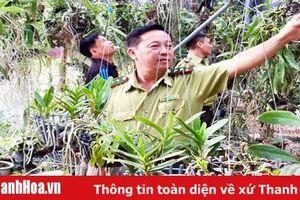 Ngăn chặn tình trạng khai thác rừng tự nhiên để lấy phong lan