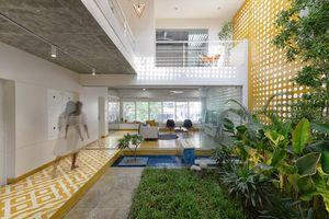 Ngôi nhà gần gũi với thiên nhiên nhờ có 'vườn đặt trong nhà'