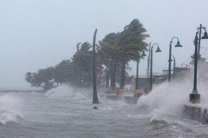 ATNĐ có thể mạnh lên thành bão; BCĐ Trung ương chỉ đạo khẩn