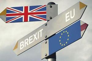 Thêm kịch bản thứ 6 cho Brexit tháng 10 trong bối cảnh Quốc hội Anh ngừng hoạt động